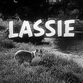 lassie_logo