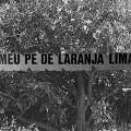 laranja_logo